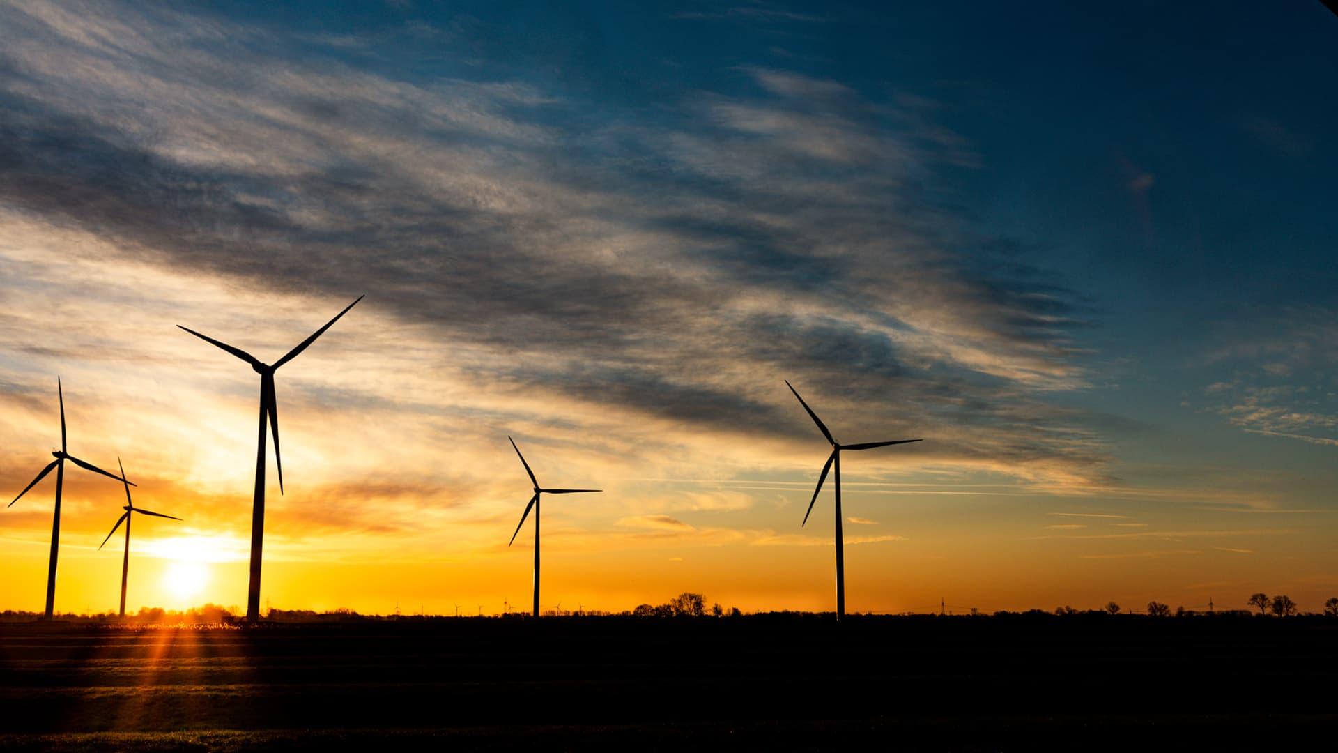 Unsere Umwelt- und Klimaschutzprojekte